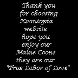 copy31_Welcome labor of love